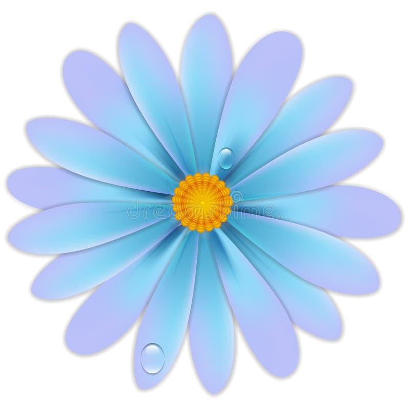 Flor com gotas ilustração do vetor