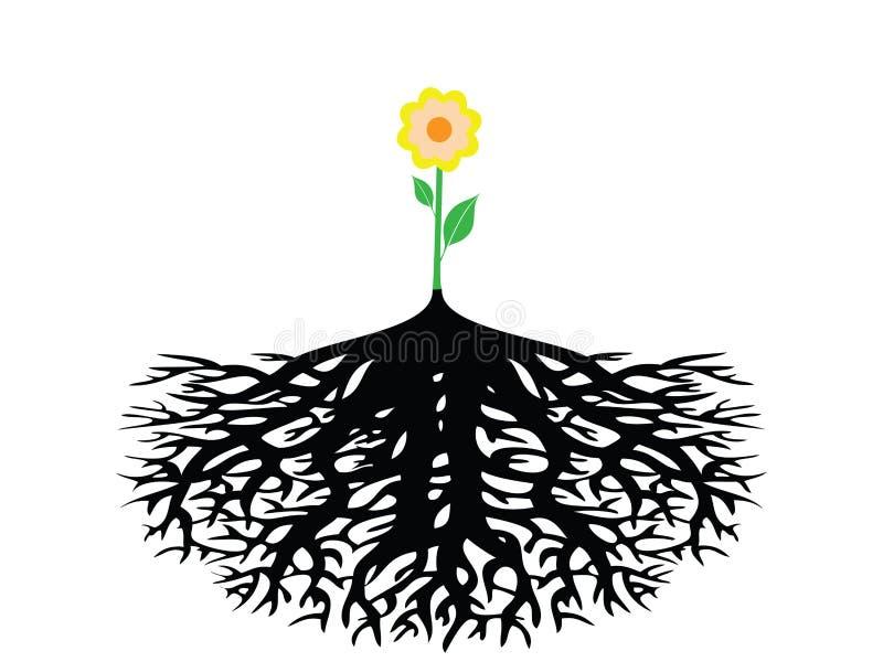 Flor com a raiz isolada ilustração royalty free