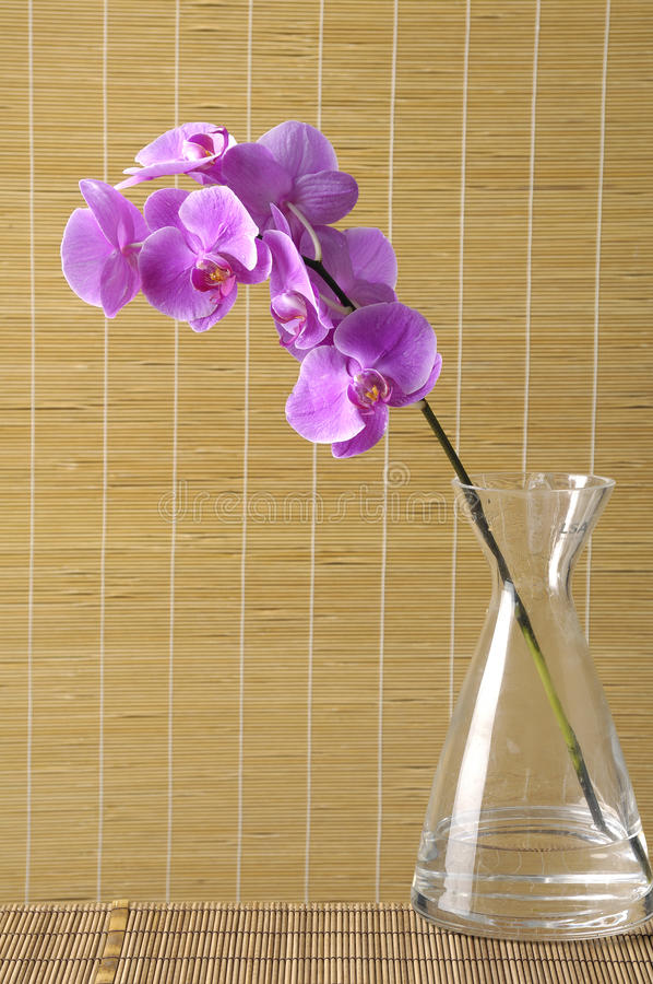 Flor con la estera imagen de archivo libre de regalías