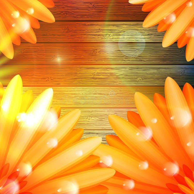 Download Flor Con Rocío En La Madera EPS10 Más Imagen de archivo - Imagen de día, flores: 42438851