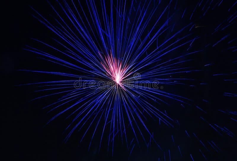 Flor cor-de-rosa azul bonita dos fogos-de-artifício imagens de stock