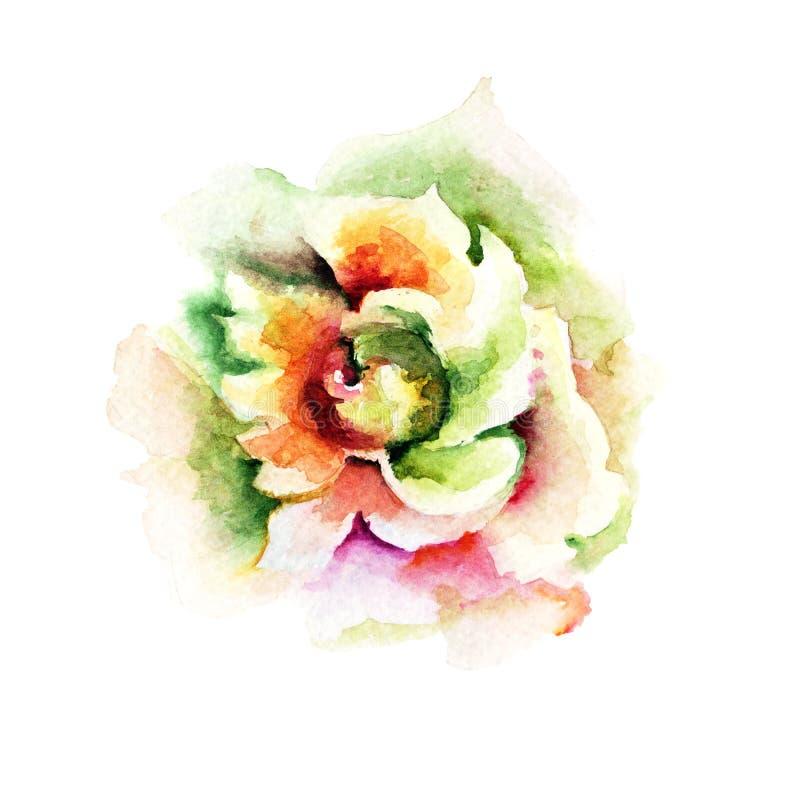 Flor cor-de-rosa bonita ilustração stock