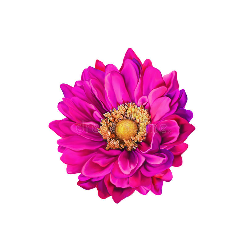 Flor cor-de-rosa colorida de Mona Lisa, flor da mola imagens de stock