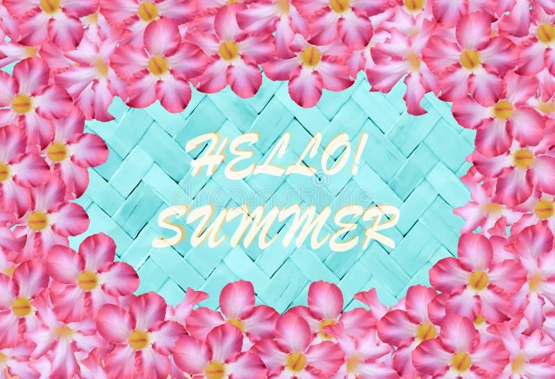 Flor cor-de-rosa e verão de bambu azul do weave, backg da bandeira do feriado ilustração royalty free