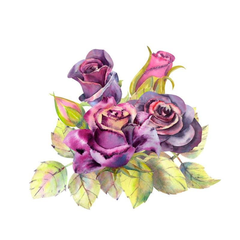 Flor cor-de-rosa escura, folhas verdes, composi??o O conceito das flores do casamento Cartaz da flor, convite watercolor ilustração stock