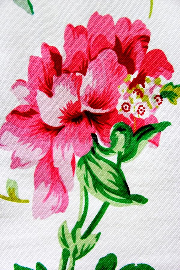 A flor cor-de-rosa de florescência imagem de stock