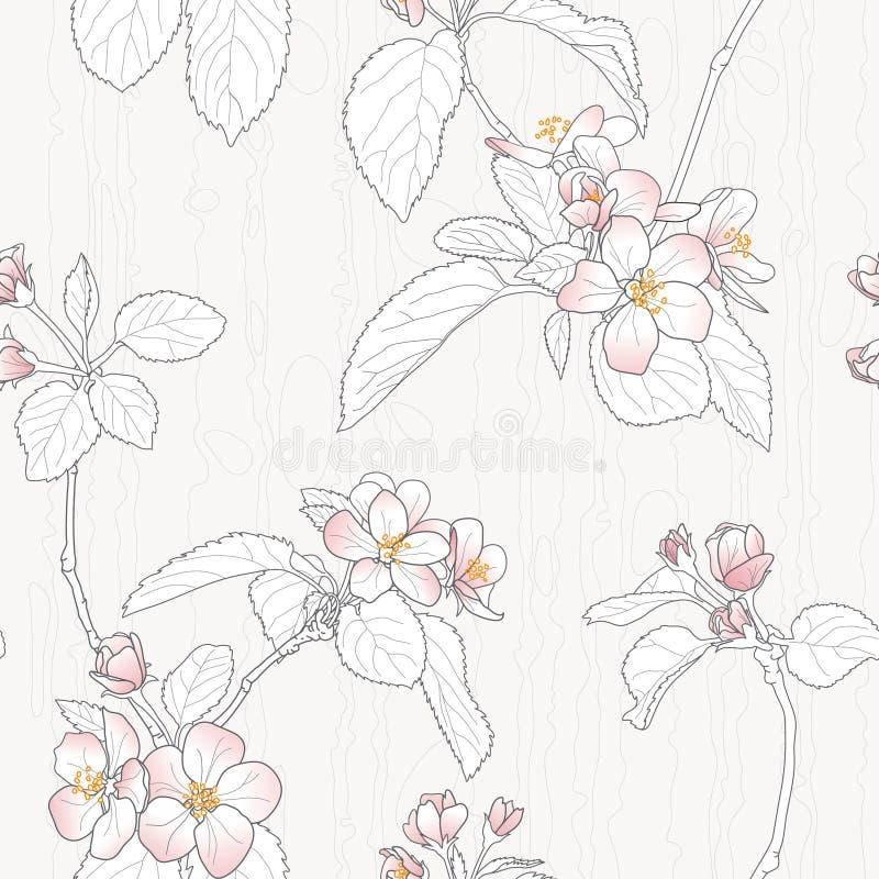 Flor da ameixa ilustração royalty free