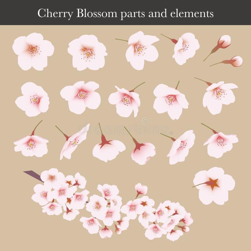 Flor da flor de cerejeira, da cereja, pe?as e elementos gr?ficos ilustração stock
