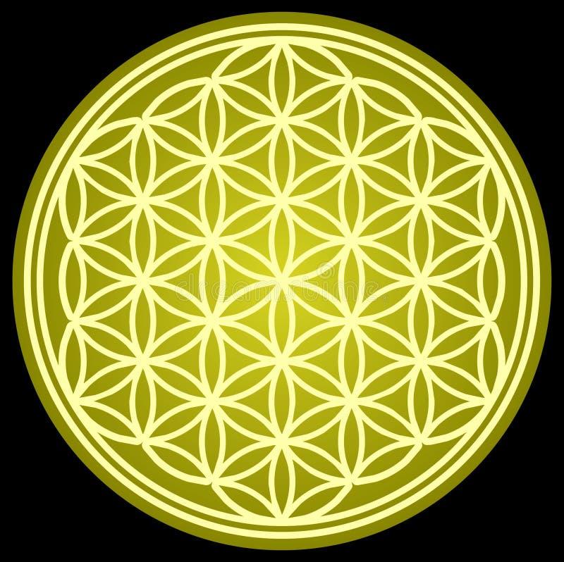 FLOR da geometria sagrado da VIDA ilustração royalty free