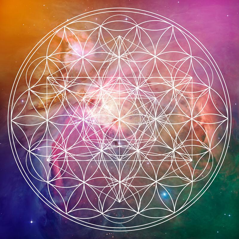 Flor da geometria sagrado da vida e do metatron ilustração stock