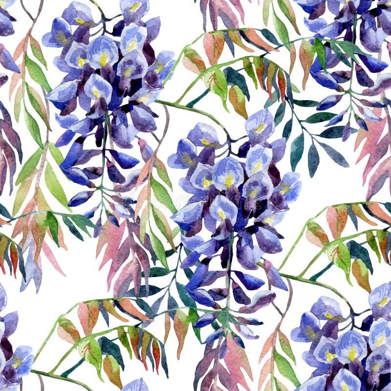 Flor da glicínia Teste padrão sem emenda da glicínia da aquarela ilustração royalty free