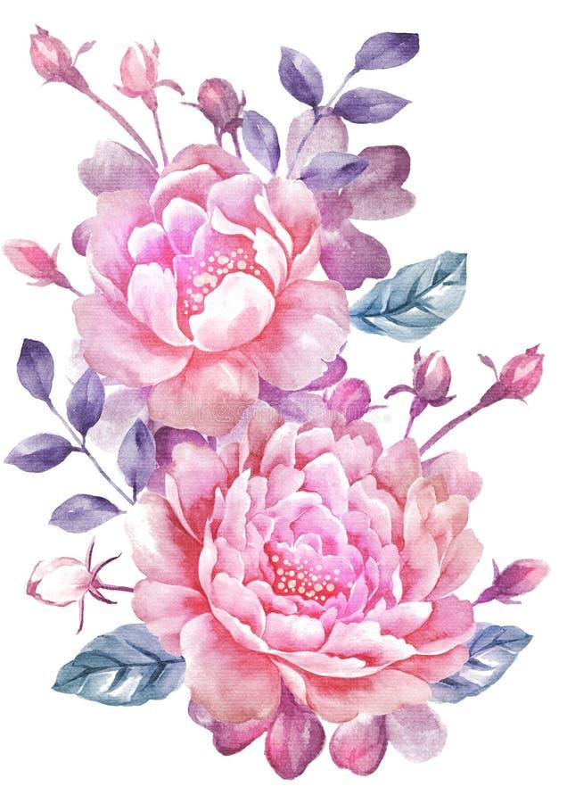 Flor da ilustração da aquarela no fundo simples ilustração royalty free