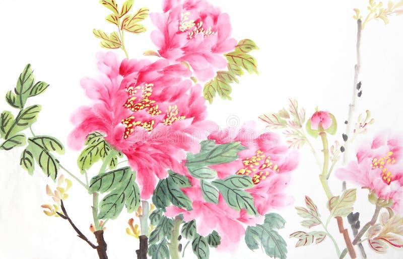 Flor da peônia foto de stock