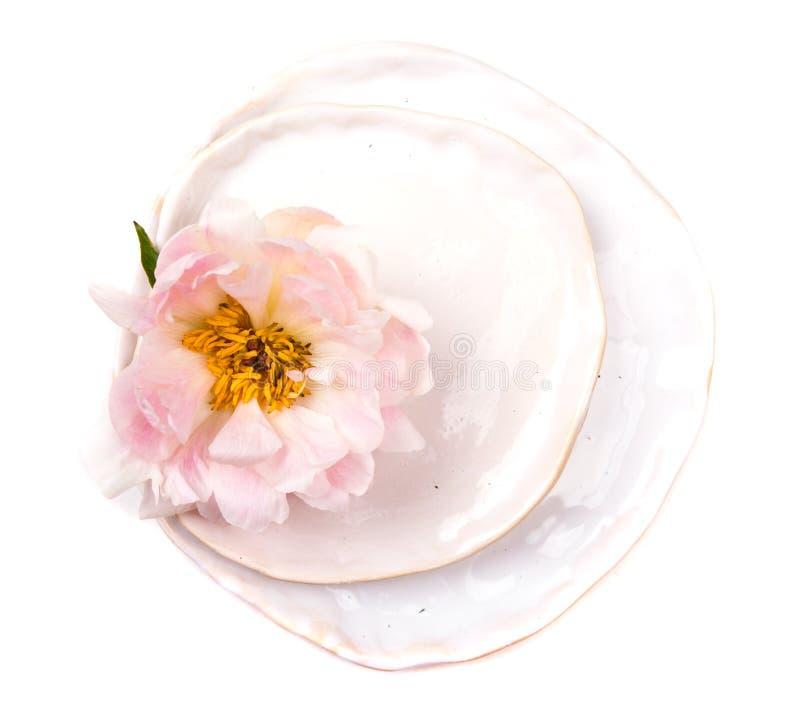 Flor da peônia na placa no fundo branco isolado imagens de stock royalty free