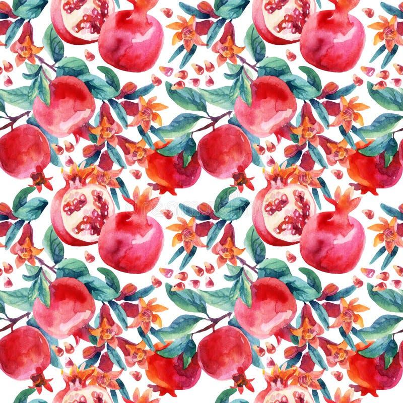 A flor da romã da aquarela ramificam e o teste padrão sem emenda do fruto ilustração do vetor
