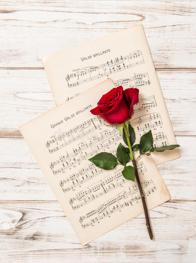 Flor da rosa do vermelho e folha das notas da música foto de stock royalty free