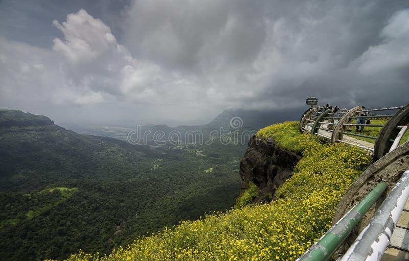Flor da flor selvagem no ponto polupar de opinião do vale em Malshej Ghat imagem de stock