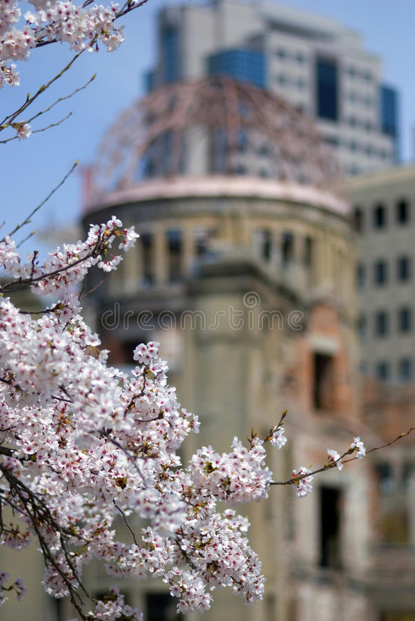 Flor de cerejeira na frente da abóbada da bomba atômica, Hiroshima, Japão fotografia de stock royalty free