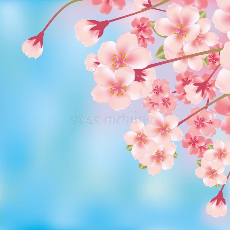 Flor de cereza de lujo abstracto stock de ilustración