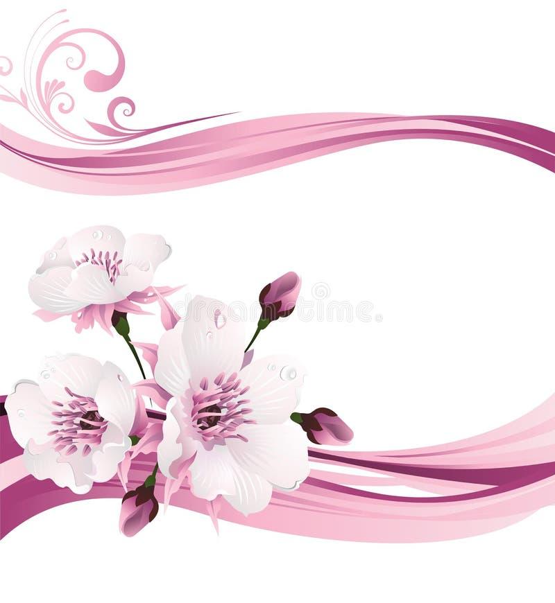 Flor de cereza en resorte stock de ilustración