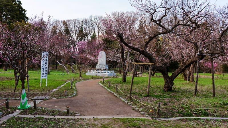 Flor de cerezo y estatua religiosa en el parque de Maruyama fotografía de archivo