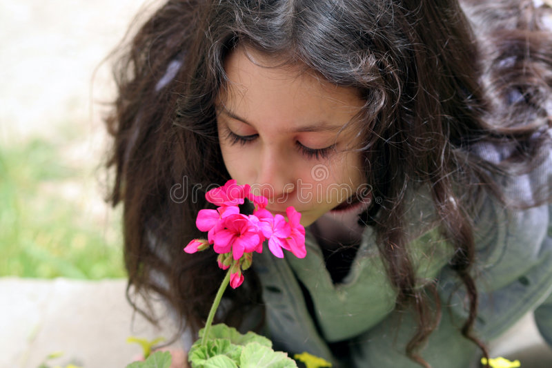 Download Flor de cheiro da menina imagem de stock. Imagem de menina - 534947