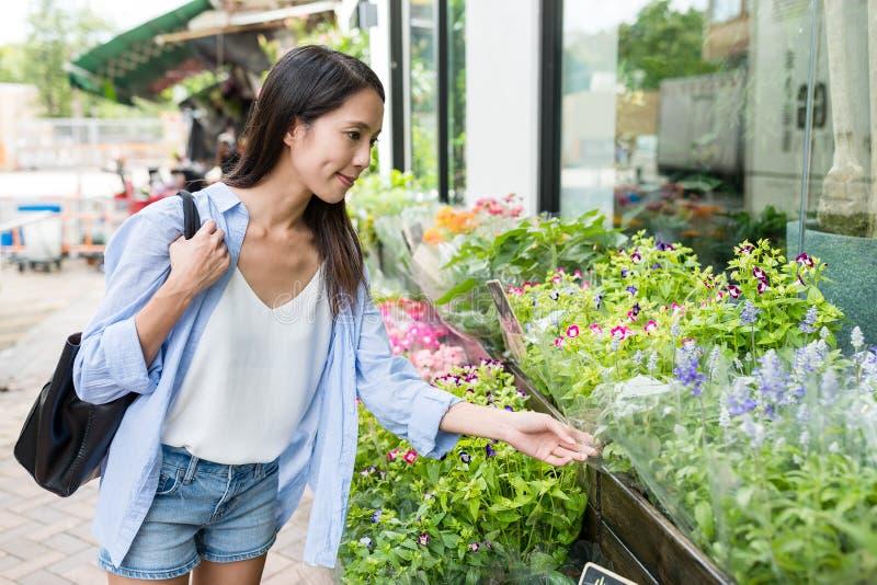 Flor de compra de la mujer en floristería fotos de archivo libres de regalías