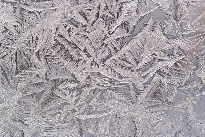 Flor de Frost en la ventana imagen de archivo