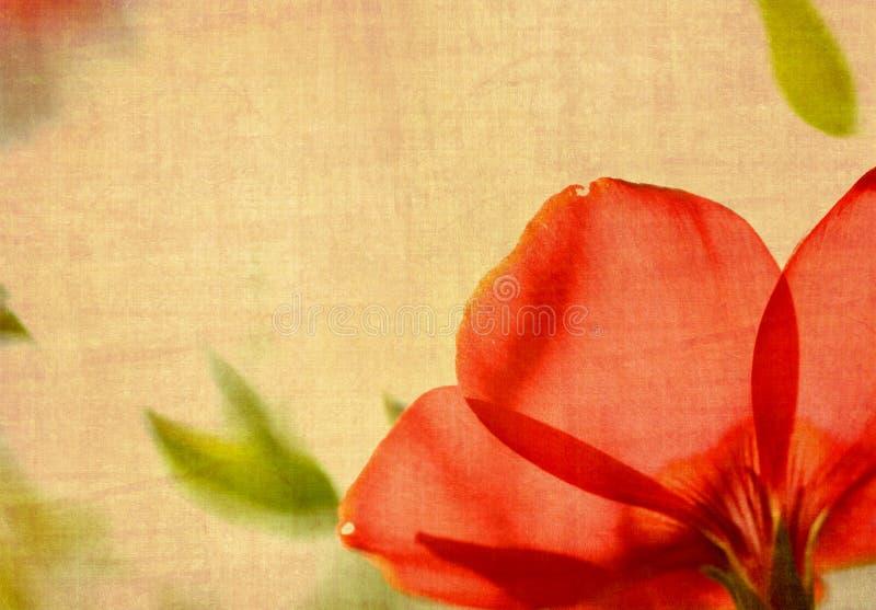 Flor de Grunge imagens de stock