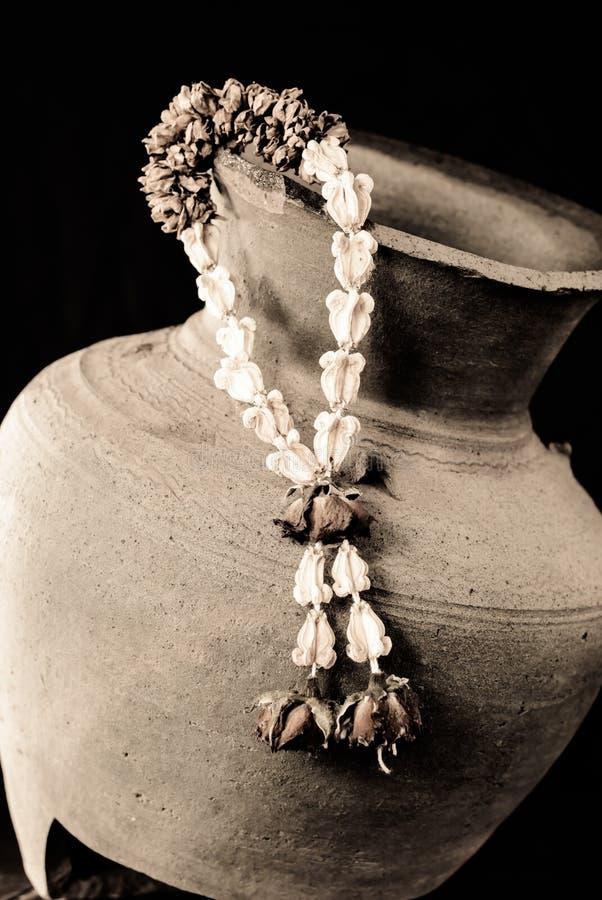 Flor de guirnalda secada fotos de archivo libres de regalías
