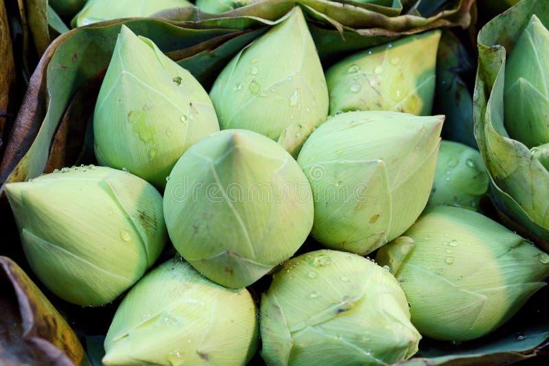 A flor de lótus é uma das flores que os povos são populares em todo o mundo Usado para adorar a Buda foto de stock