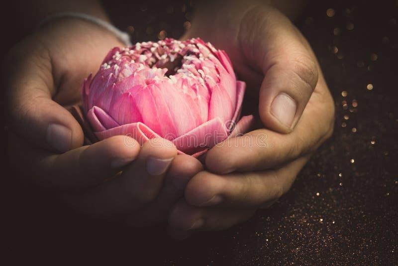 A flor de lótus cor-de-rosa que dobra o estilo tailandês na equipa a mão para o religio imagem de stock royalty free
