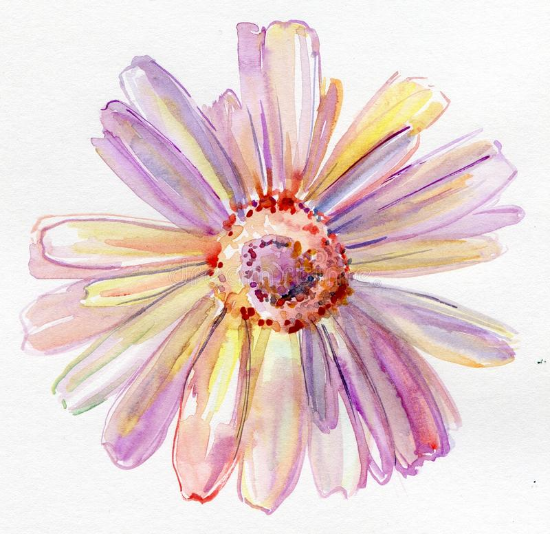 Flor de la acuarela libre illustration