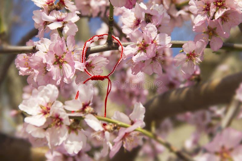 Flor de la almendra en primavera en Bulgaria fotos de archivo