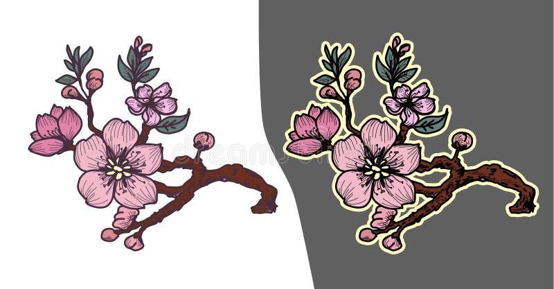 Flor de la flor de cerezo de Jap?n Flor del melocot?n del esquema y de la silueta libre illustration