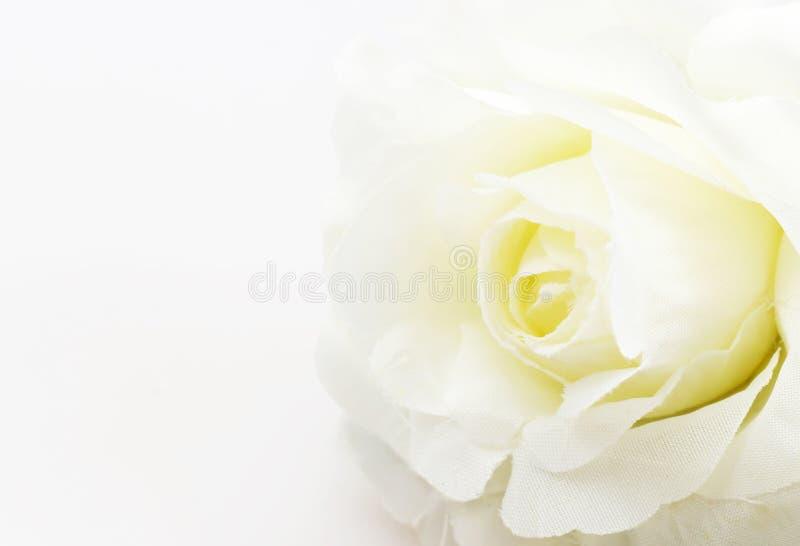 Flor de la falsificación de la rosa del blanco en el fondo blanco imagen de archivo