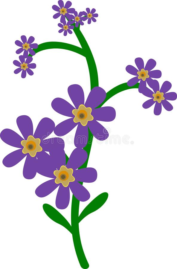 Flor de la lavanda para la belleza y el cosmético stock de ilustración