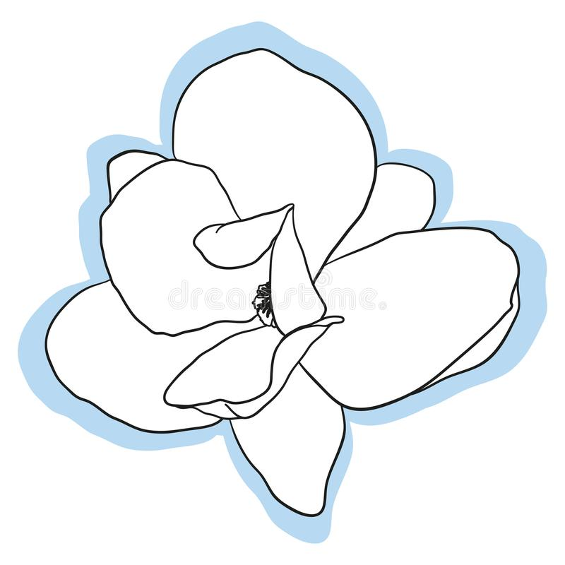 Flor de la magnolia aislada stock de ilustración