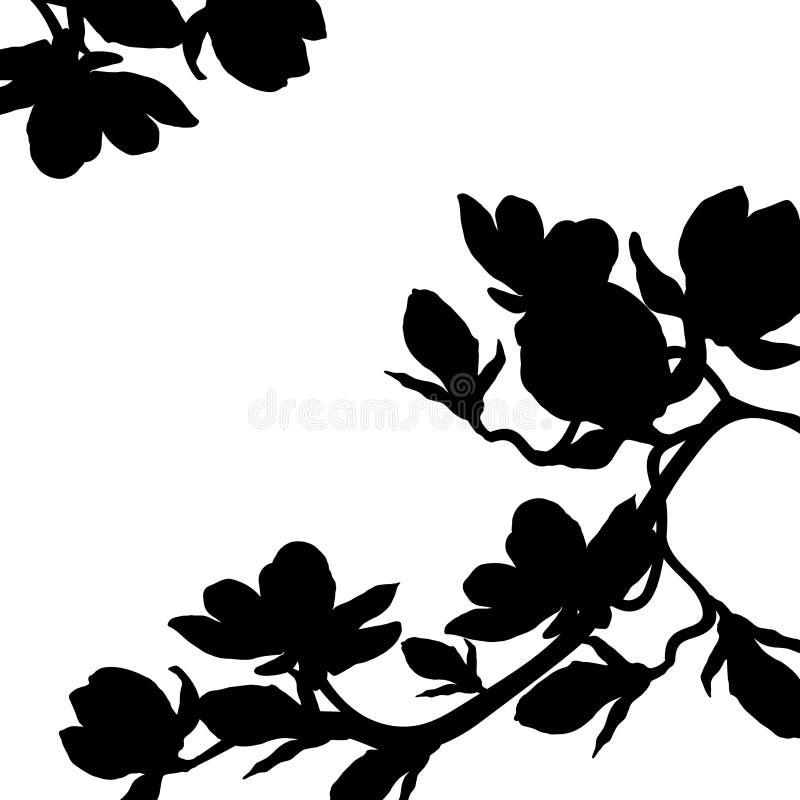 Flor de la flor de la magnolia de la rama de la silueta Ilustración del vector ilustración del vector