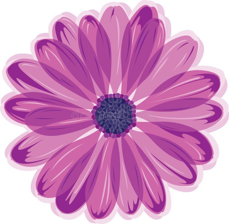 Flor de la margarita stock de ilustración