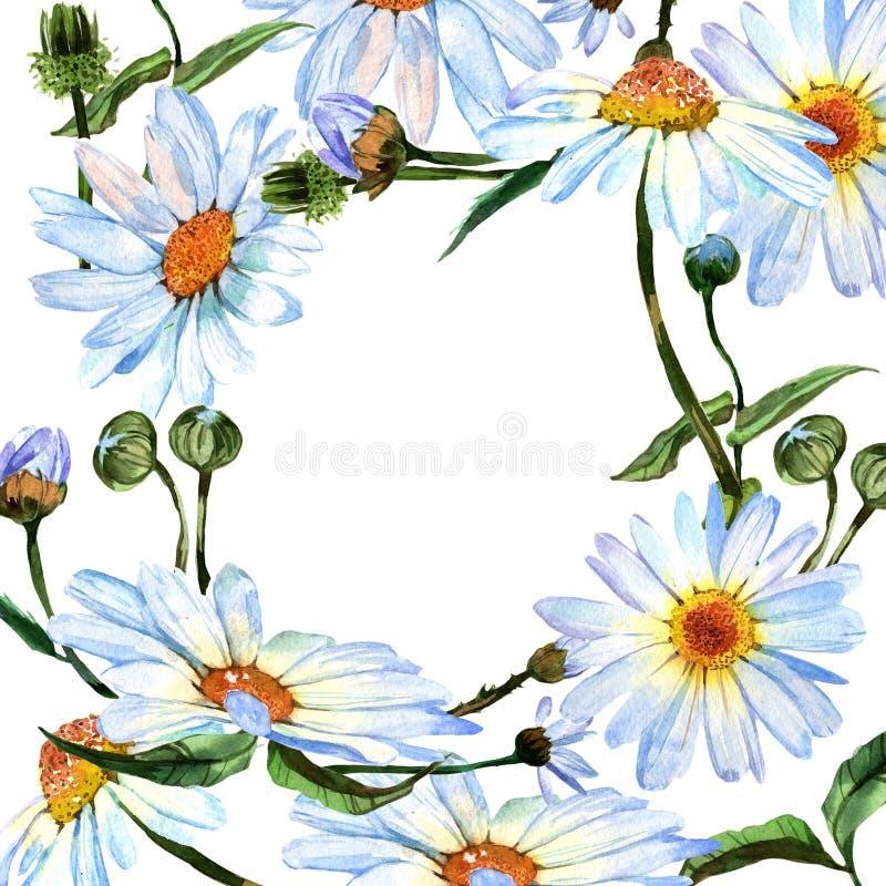 Flor De La Margarita Del Wildflower En Marco Un Estilo De La ...