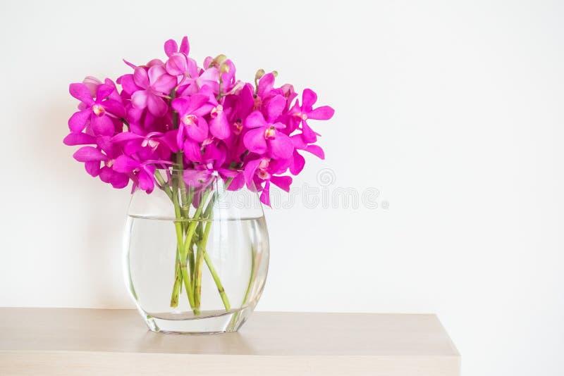 Flor de la orquídea en florero fotos de archivo