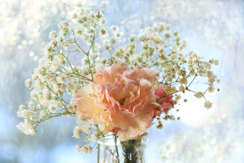 Flor de la primavera en fondo borroso abstracto con el bokeh fotografía de archivo
