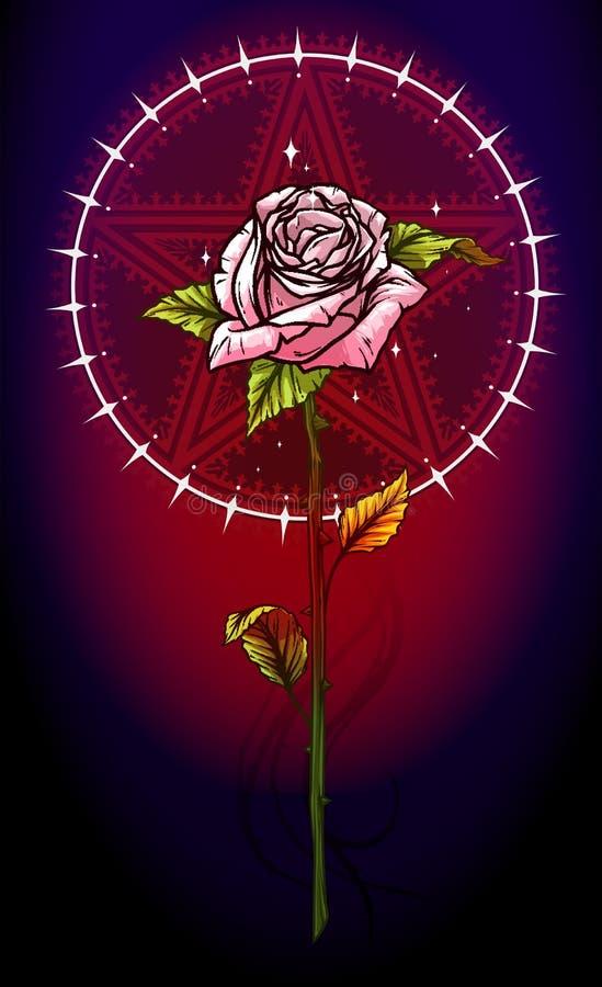Flor de la rosa del rosa con la estrella del pentagram ilustración del vector