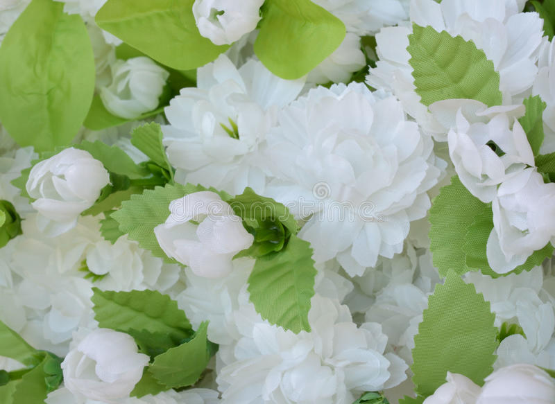 Flor de la tela, fondo floral fotografía de archivo