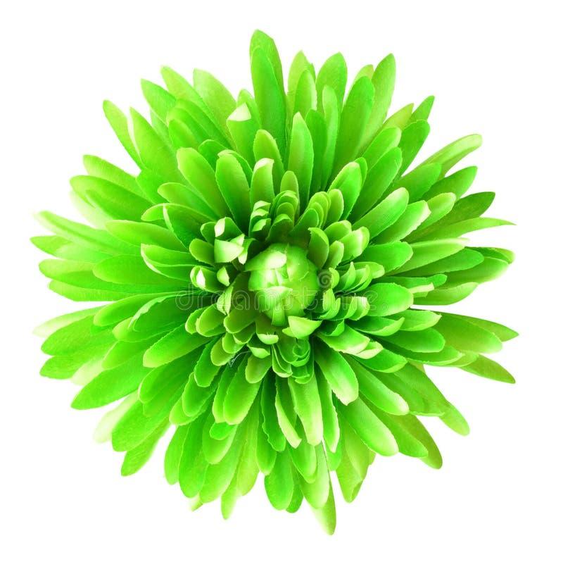Flor de la tela, fondo floral imagen de archivo