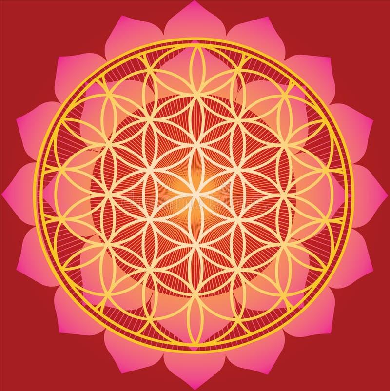 Flor de la vida en loto rojo stock de ilustración