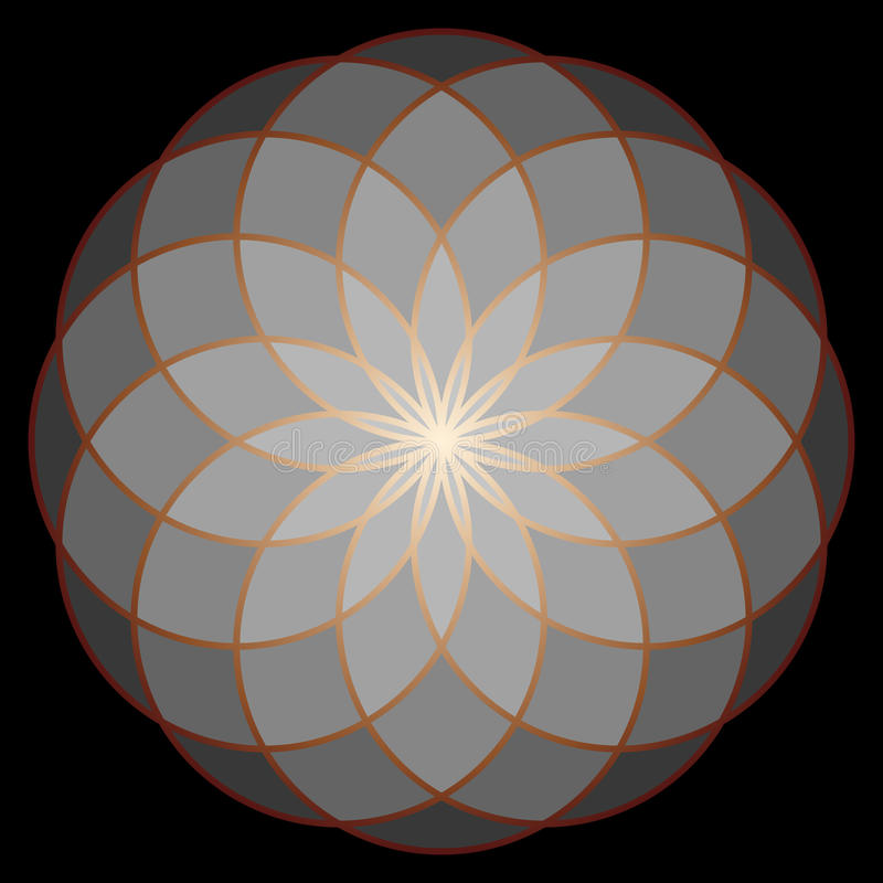 Flor de la vida Geometría sagrada stock de ilustración
