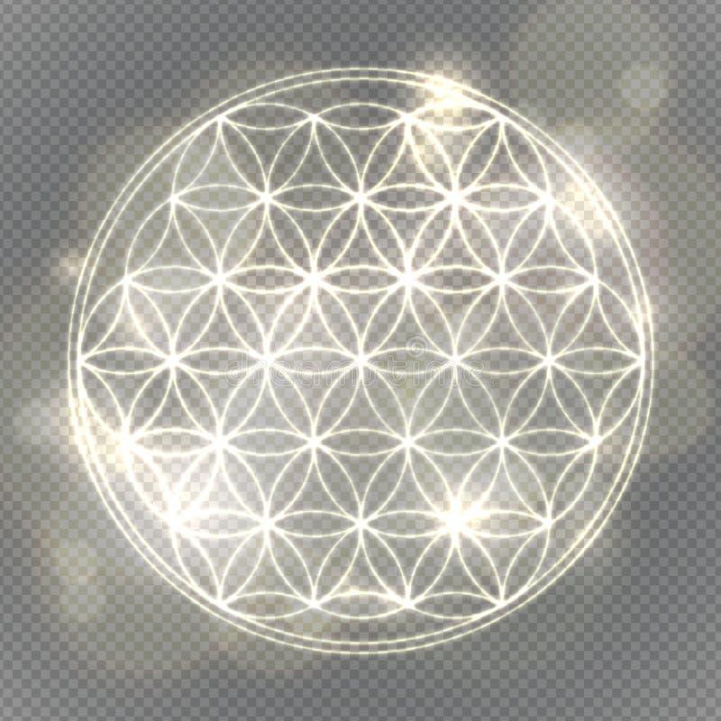 Flor de la vida La geometría sagrada, vector símbolo espiritual stock de ilustración