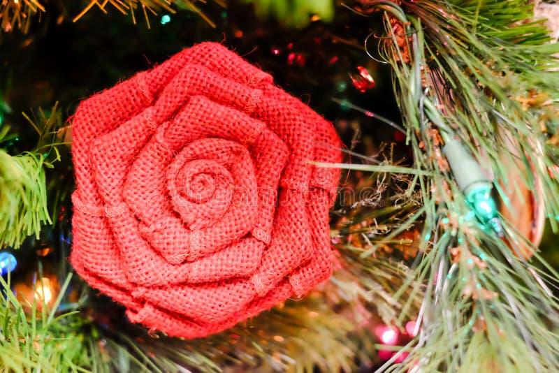 Flor de las decoraciones del día de fiesta en un árbol imagenes de archivo